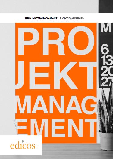 Download Whitepaper: Projektmanagement – richtig Angehen